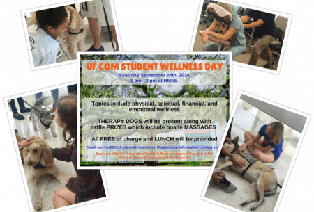 wellness-day-collage-2016-10-20